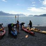 Kayaking Resurrection Bay July '13