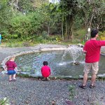 Playing at the fish pond