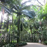 Parque Tenente Siqueira Campos