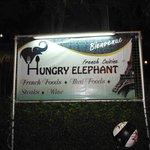 Photo of Hungry Elephant