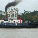 Foto de Panama Canal Boat Eco Tour