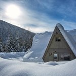 Our cozy chalets! Courtesy of Lee Orr