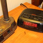 roaches, that is their clock, lamp, and blanket