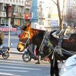 GuangFa CaoYuan MengGu BuLuo (BinHe Main Street)