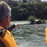 A Different Sort of Island on the Wanganui River