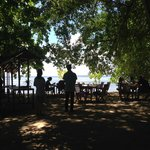 Lunch under the Banyan tree