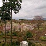 Foto de Ikoinomura