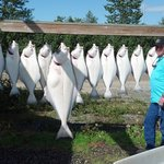 Cook inlet halibut caught with Russell fishing owner