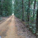 Entering Sani Valley