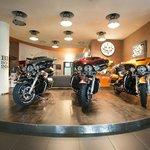 Harley-Davidson Speed Shop - Rentals