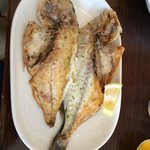 Gilt-head bream, in Spain it is called dorada.