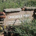 Croc Point