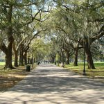 Forsyth Park in Savannah, Georgia