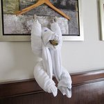 fantastic towel animals made each day