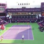 Qatar Total Open 2014 Dubles Final