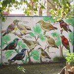 Bird sanctuary MAR2014