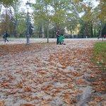 Otoño en el Parco Ducale