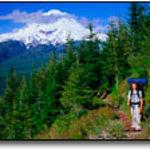 Photo de Summit Meadow Cabins