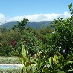 Blick auf den Vulkan Tenorio mit Pool