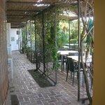 Il pergolato tra le stanze e la terrazza giardino