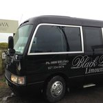 Black Rose Limo, Napier