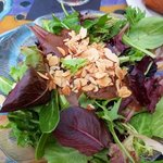Fresh salad with toasted almonds