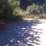 Unsere Site mit Feuerstelle und Campingtisch fast direkt am Strand