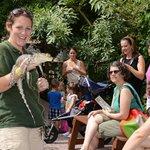 Reptile Encounter Show