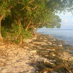 The beach in front of our bure