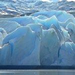 Excursión Glaciar Grey