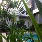 Nice garden,,,!!