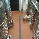 wine making facilities