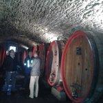 natural wine storage
