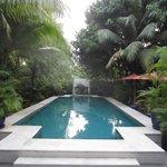 The Pavilion Pool - morning