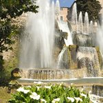 Fountain of Neptune with calla lilies