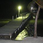 Dock at night.  Tarpon swimming all over.