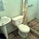 Dirty toilet & shower of private rooms with shared bathroom ($45/night)!!!!