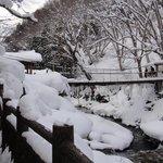 想去子寶最大的混浴就要經過這條橋 酷冬過這條橋要小心滑倒
