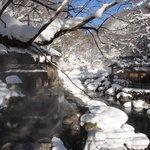 冬天來這裡真的很美很美 美呆了