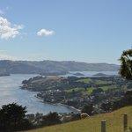 Péninsule d'Otago 3
