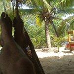 Relax en la Isla
