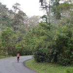 The walk/ride between Kaya's Place and Punta Uva offers beach and jungle forays.