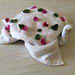 Towel Art 2