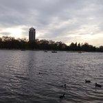 Vu du lac