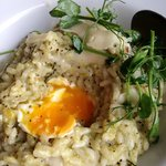 Poached egg in asparagus risotto