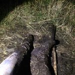 My legs covered in mud up to my thighs.