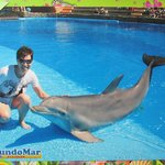 pics with dolphin 10euro