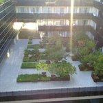 Jardin interior, vistas desde la terraza de arriba