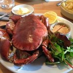 brown crab, was today an extra choice for the lunch menu