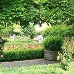Beautiful gardens of Schloss Montebaur